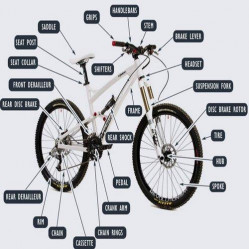 Category image for Cycle Parts